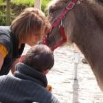 Visite MAS de Paimpol à l'asinerie des Ânes de Min Guen - ferme pédagogique