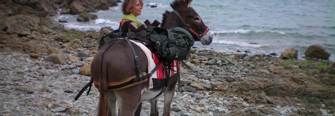 Randonnée avec les ânes de Min Guen à Saint Fiacre (22)