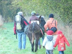 Ballade avec les Ânes à la ferme pédagogique de Min Guen en Bretagne