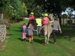 Vacances d'enfants à la ferme bretagne balade - Les ânes de Min Guen