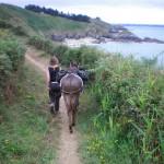 Randonnée avec les Ânes de Min Guen - Saint Fiacre
