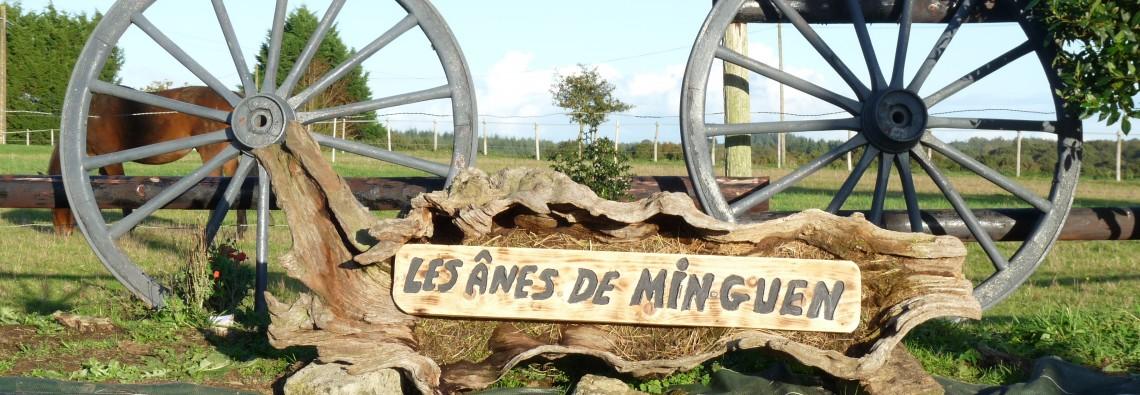 Asinerie et ferme pédagogique de Min Guen dans les Côtes d'armor